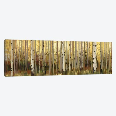 Forest Light Canvas Print #ALP85} by Allison Pearce Canvas Art