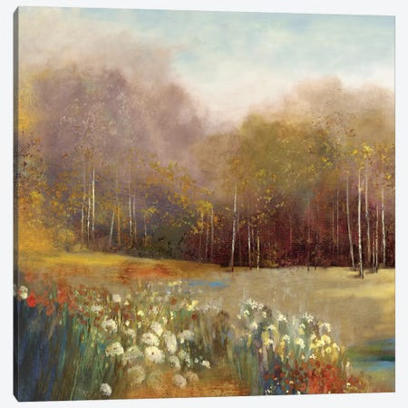 Garden Dreams I Canvas Print #ALP89} by Allison Pearce Art Print
