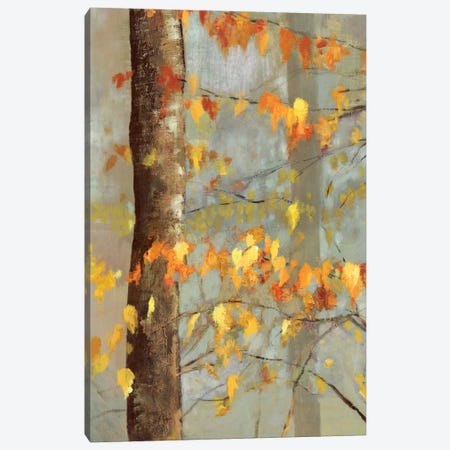 Golden Branches I Canvas Print #ALP93} by Allison Pearce Canvas Wall Art