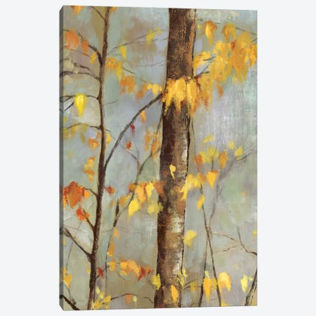 Golden Branches II Canvas Print #ALP94} by Allison Pearce Art Print
