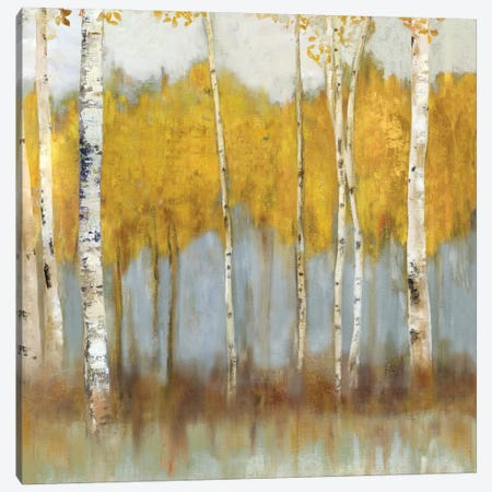 Golden Grove II Canvas Print #ALP96} by Allison Pearce Art Print