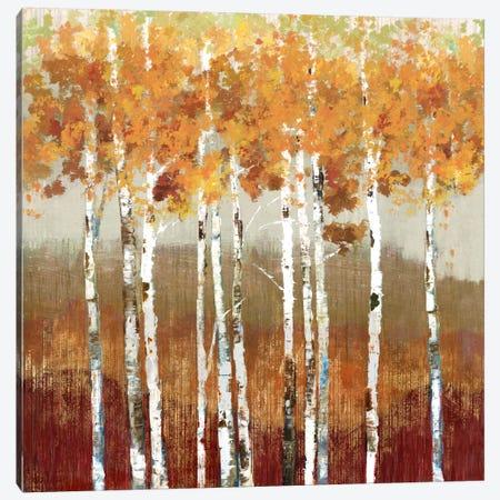 Golden Landscape Canvas Print #ALP97} by Allison Pearce Canvas Art Print