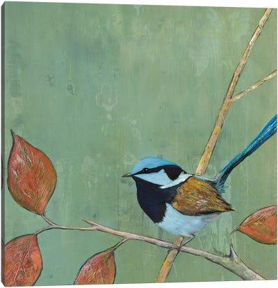 Resting Bird I Canvas Art Print