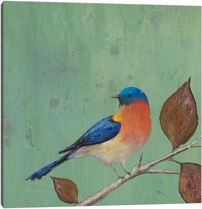 Resting Bird II Canvas Art Print