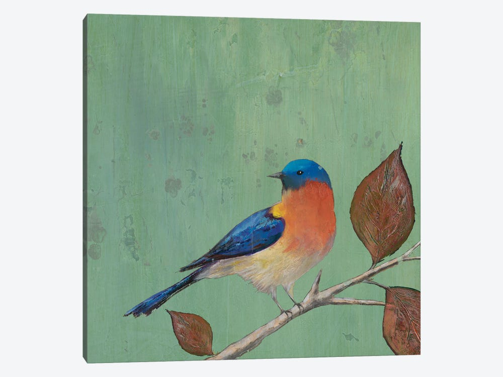 Resting Bird II by Mehmet Altug 1-piece Canvas Art Print