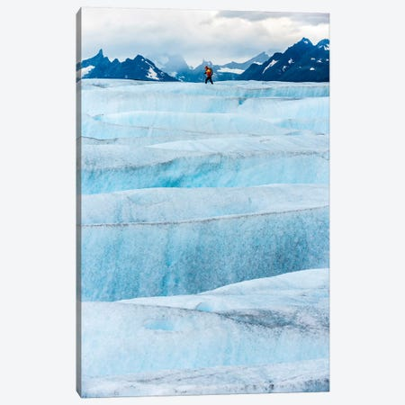 Crossing Tyndall Glacier, Patagonian Ice Cap, Patagonia, Chile Canvas Print #ALX16} by Alex Buisse Canvas Art Print
