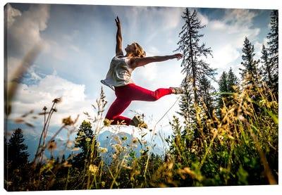 Joyous Dance, Mont Blanc Range, Chamonix, Haute-Savoie, Auvergne-Rhone-Alpes, France Canvas Print #ALX25