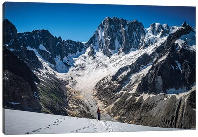 Mount Forbes, 8th Tallest Mountain In The Canadian Rockies, Alberta, Canada II Canvas Print #ALX64