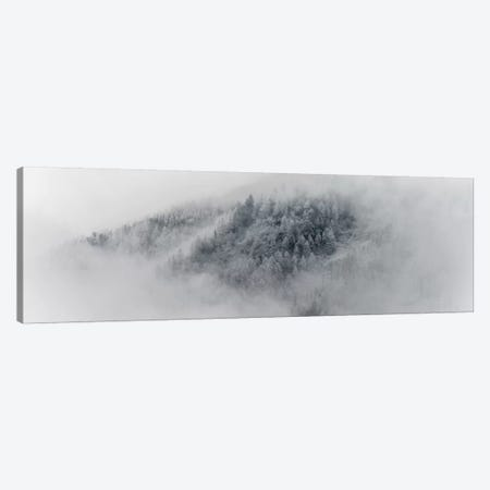 Details Of Snowy Trees In Chamonix, France Canvas Print #ALX78} by Alex Buisse Canvas Artwork