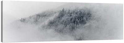 Details Of Snowy Trees In Chamonix, France Canvas Art Print