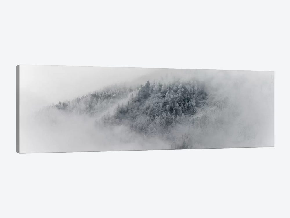 Details Of Snowy Trees In Chamonix, France by Alex Buisse 1-piece Canvas Art