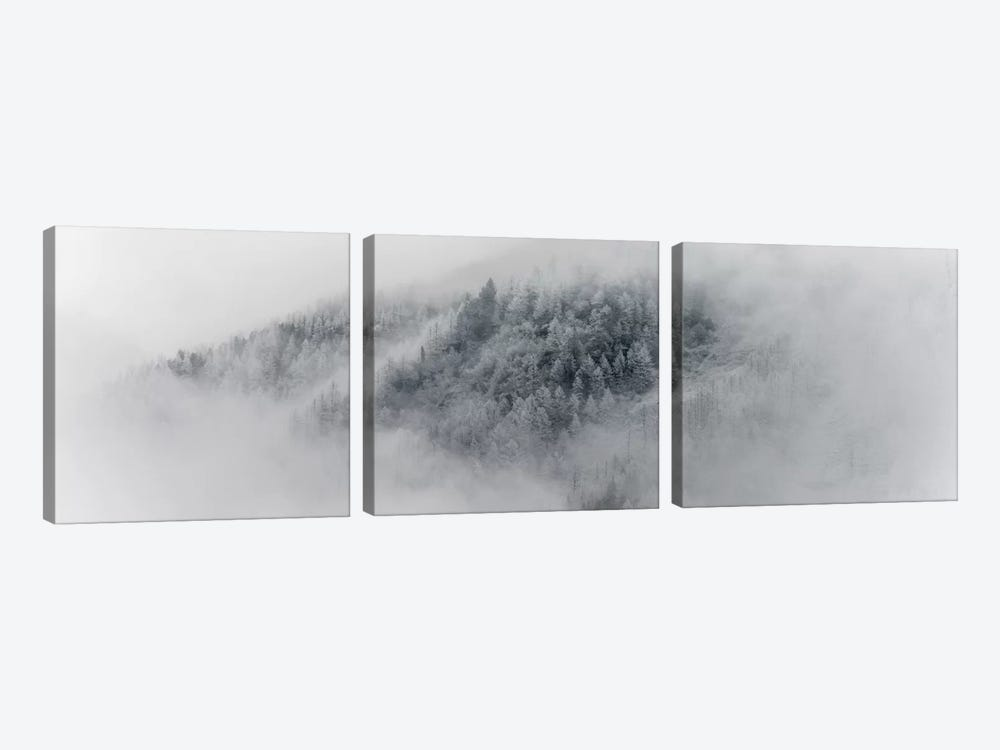 Details Of Snowy Trees In Chamonix, France by Alex Buisse 3-piece Canvas Artwork