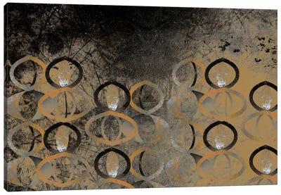 Visual Perception Canvas Art Print