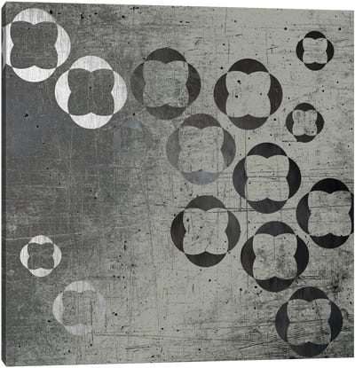 Through Gray Canvas Print #AMA6