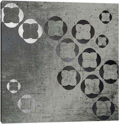 Through Gray Canvas Art Print
