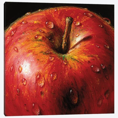 Apple Canvas Print #AMC10} by AlmaCh Canvas Wall Art
