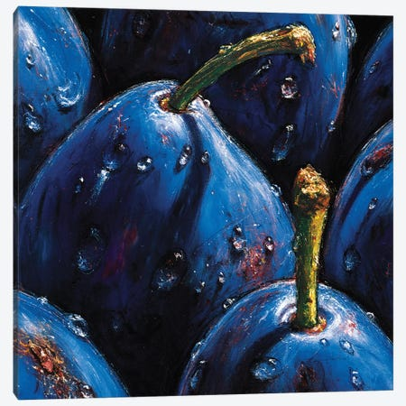 Plums Canvas Print #AMC11} by AlmaCh Canvas Artwork