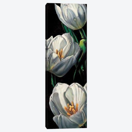 Dewdrop Tulips Canvas Print #AMC14} by AlmaCh Art Print