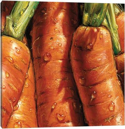 Carrots Canvas Art Print