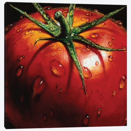 Tomato Canvas Print #AMC2} by AlmaCh Canvas Wall Art