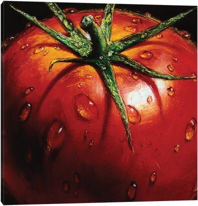 Tomato Canvas Art Print