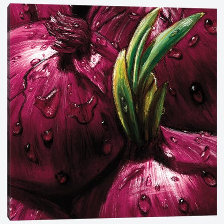 Onions Canvas Print #AMC3} by AlmaCh Canvas Wall Art