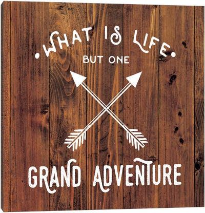 Grand Adventure Canvas Art Print