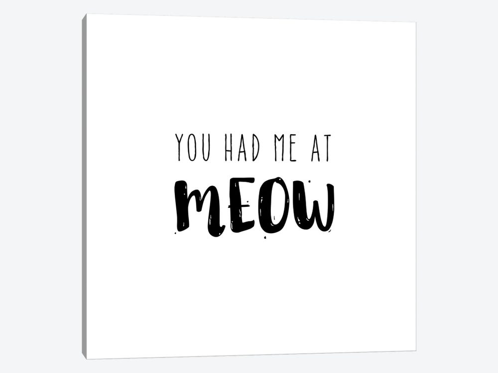 Had Me At Meow by Amanda Murray 1-piece Canvas Wall Art