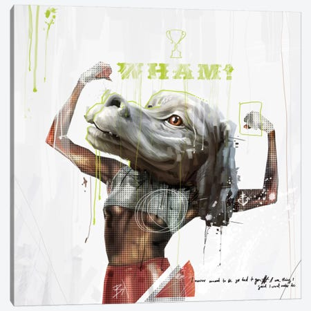 Falcor Canvas Print #AME27} by Armando Mesias Canvas Art