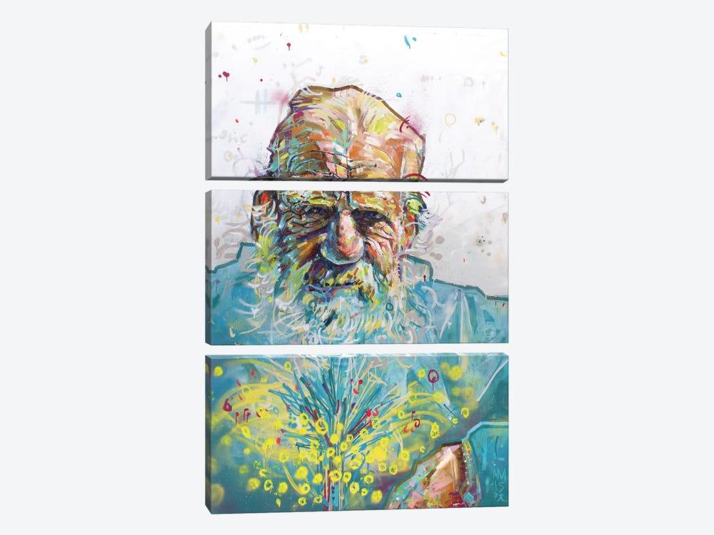Lagos I by Armando Mesias 3-piece Canvas Artwork