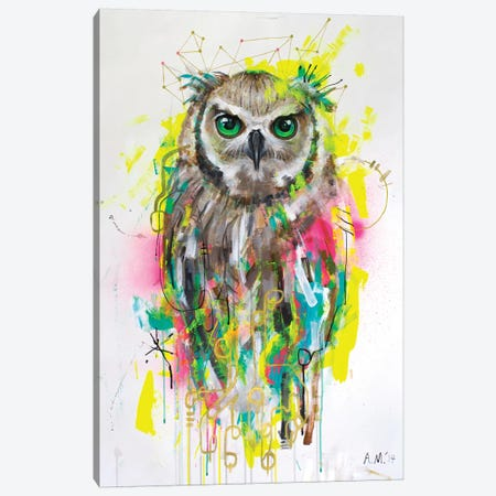 Lechuza Canvas Print #AME43} by Armando Mesias Art Print