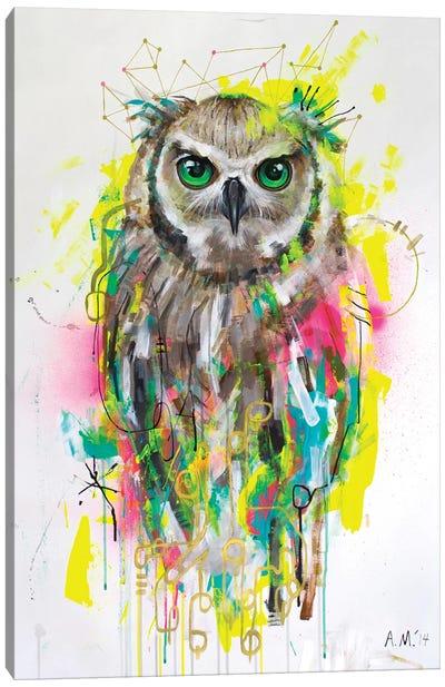 Lechuza Canvas Art Print