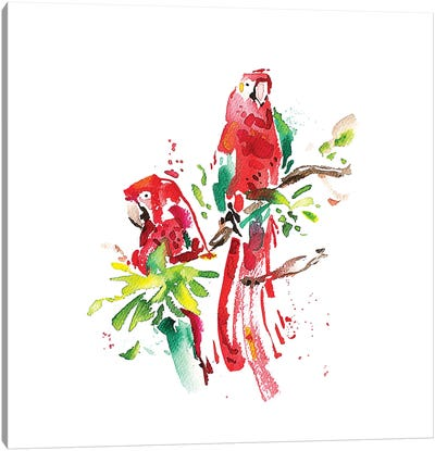 Loros Canvas Art Print