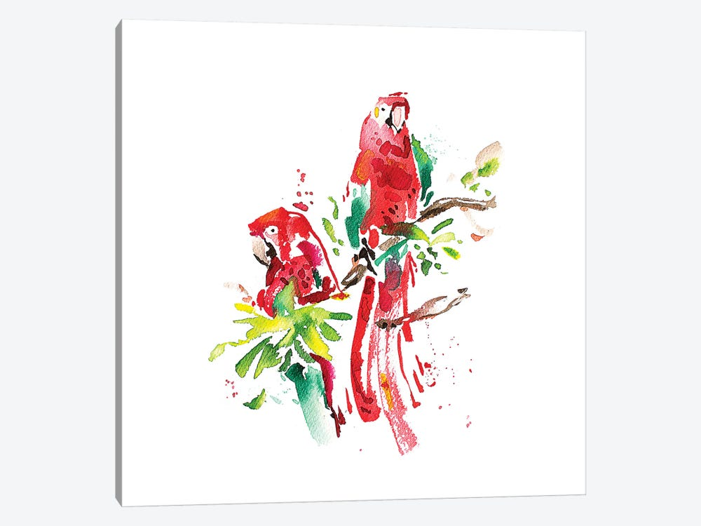 Loros by Armando Mesias 1-piece Canvas Art