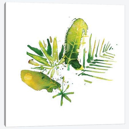 Matas Canvas Print #AME55} by Armando Mesias Canvas Art Print