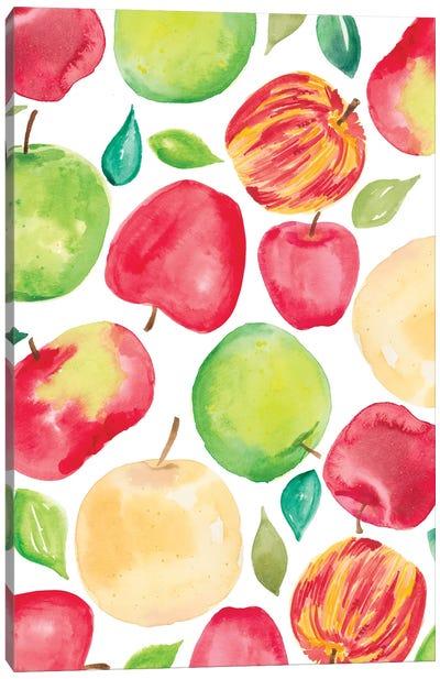 Apple Harvest V Canvas Art Print