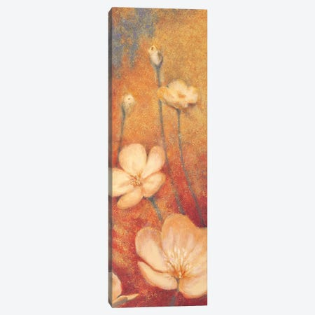 Floral Poetry II Canvas Print #AML2} by Anne Michaels Art Print