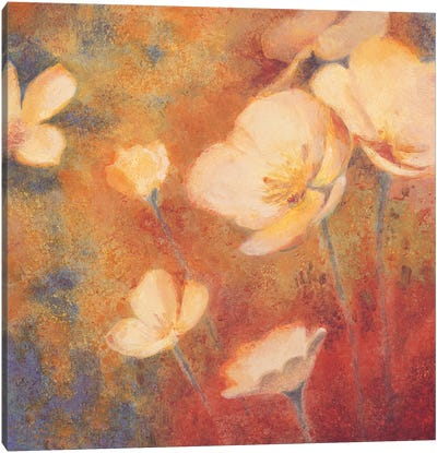Field of Color I Canvas Art Print