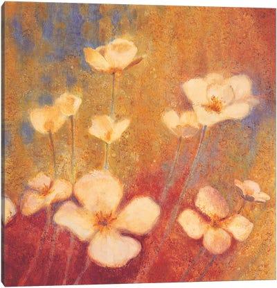 Field of Color II Canvas Art Print