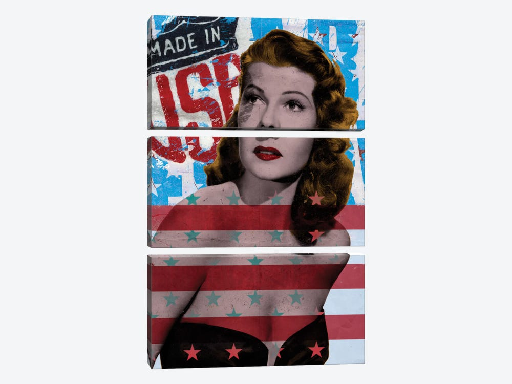 American Beauty by 5by5collective 3-piece Canvas Wall Art