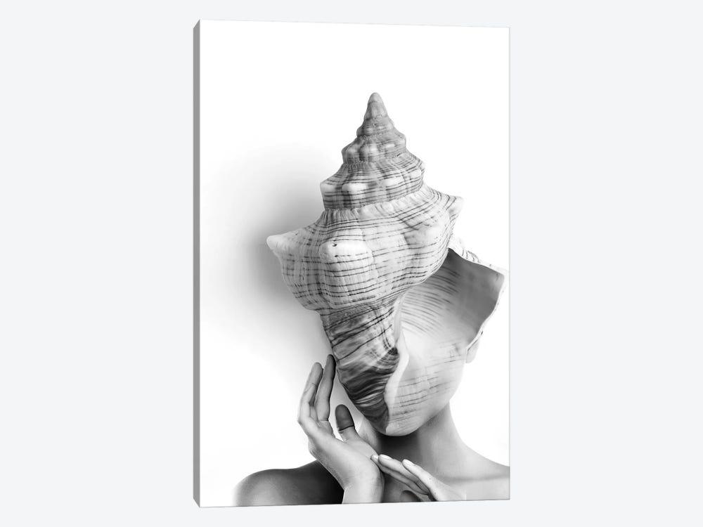 Shell Lady by Tatiana Amrein 1-piece Canvas Artwork