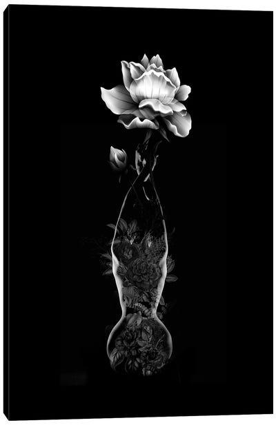 Vase Canvas Art Print
