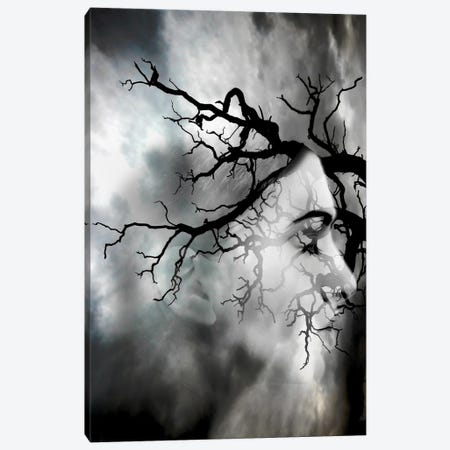 Bad Weather Canvas Print #AMR10} by Tatiana Amrein Art Print