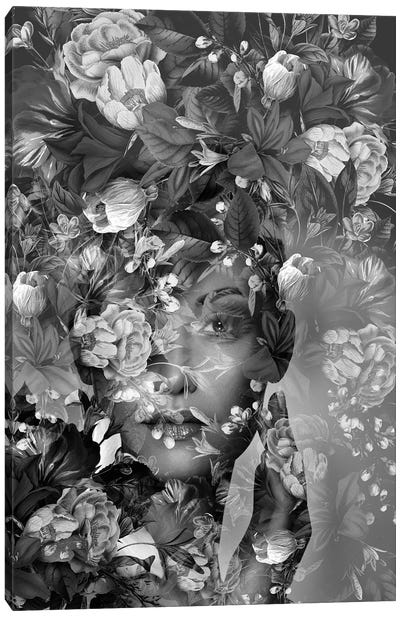 Spring II In Black And White Canvas Art Print