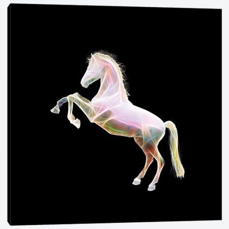 Dreamy Horse 3-Piece Canvas #AMR131} by Tatiana Amrein Canvas Art Print