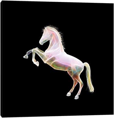 Dreamy Horse Canvas Art Print