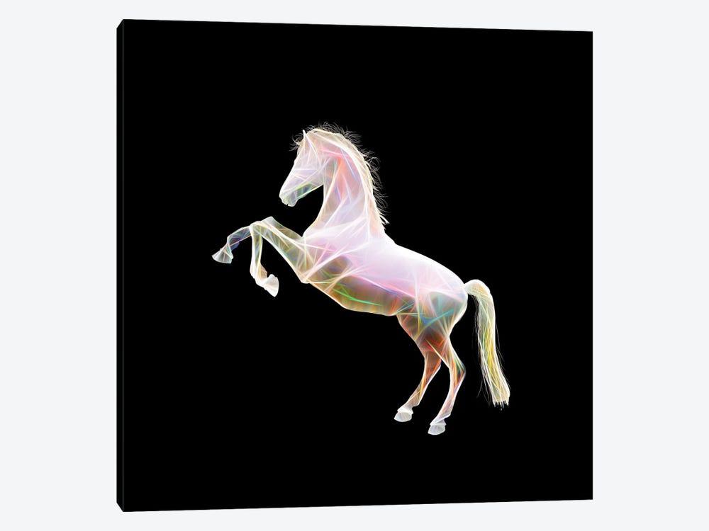 Dreamy Horse by Tatiana Amrein 1-piece Canvas Artwork