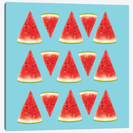 Melon Slices I Canvas Print #AMR135} by Tatiana Amrein Canvas Art
