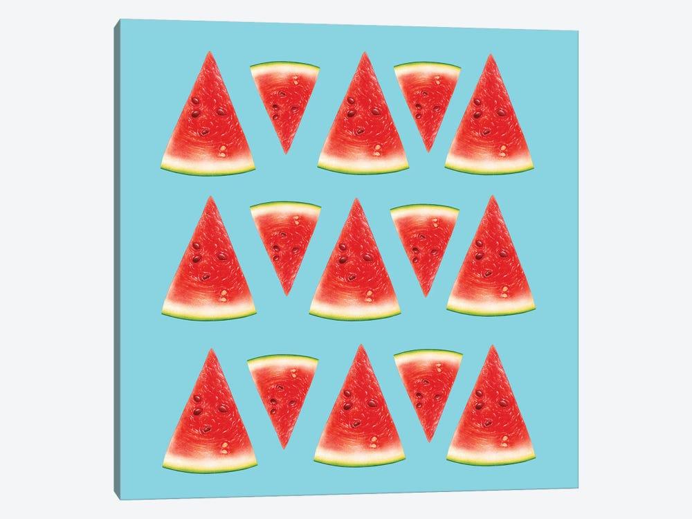 Melon Slices I by Tatiana Amrein 1-piece Canvas Art