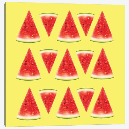 Melon Slices II Canvas Print #AMR136} by Tatiana Amrein Canvas Wall Art